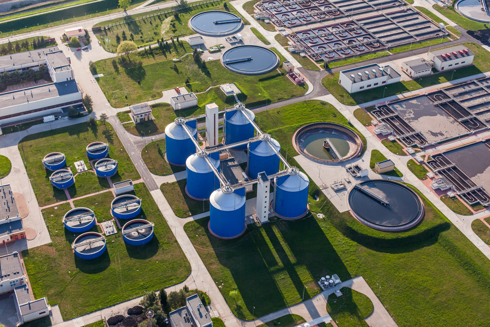aerial view of plant